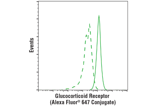 Flow cytometric analysis of human whole blood using Glucocorticoid Receptor (D8H2) XP<sup>®</sup> Rabbit mAb (Alexa Fluor<sup>®</sup> 647 Conjugate) (solid line) compared to concentration-matched Rabbit (DA1E) mAb IgG XP<sup>®</sup> Isotype Control (Alexa Fluor<sup>®</sup> 647 Conjugate) #2985 (dashed line). Analysis was performed on CD19+ B-cells.
