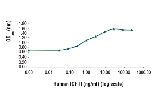 FDC-P1 cells were cultured with 0 to 250 ng/mL of hIGF-II. Cell proliferation was assessed after 48 hours by measuring OD<sub>490</sub>.