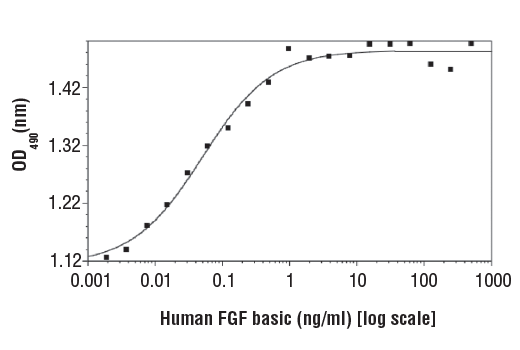 Image 1: Human Basic Fibroblast Growth Factor (hFGF basic/FGF2)
