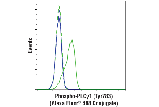 Flow cytometric analysis of serum-starved NIH/3T3 cells, untreated (blue) or treated with mouse platelet-derived growth factor BB (200 ng/ml, 15 min; green), using Phospho-PLCγ1 (Tyr783) (D6M9S) Rabbit mAb (Alexa Fluor<sup>®</sup> 488 Conjugate) (solid lines) or concentration-matched Rabbit (DA1E) mAb IgG XP<sup>®</sup> Isotype Control (Alexa Fluor<sup>®</sup> 488 Conjugate) #2975 (dashed lines).
