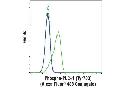 Monoclonal Antibody - Phospho-PLCγ1 (Tyr783) (D6M9S) Rabbit mAb (Alexa Fluor® 488 Conjugate), UniProt ID P19174, Entrez ID 5335 #25678
