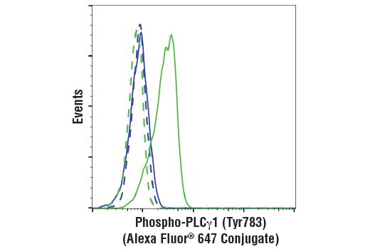 Monoclonal Antibody - Phospho-PLCγ1 (Tyr783) (D6M9S) Rabbit mAb (Alexa Fluor® 647 Conjugate), UniProt ID P19174, Entrez ID 5335 #88717, Plcgamma1