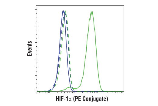 Flow cytometric analysis of U-2 OS cells, untreated (blue) or treated with DMOG (1 mM, 6 hr; green), using HIF-1α (D1S7W) XP<sup>®</sup> Rabbit mAb (PE Conjugate) (solid lines) or concentration-matched Rabbit (DA1E) mAb IgG XP<sup>®</sup> Isotype control (PE Conjugate) #5742 (dashed lines).
