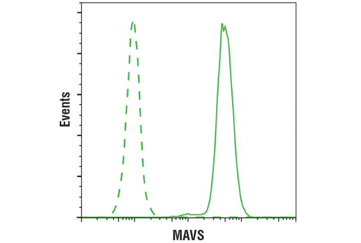 Flow cytometric analysis of THP-1 cells (green) using MAVS (D5A9E) Rabbit mAb (solid line) compared to concentration-matched Rabbit (DA1E) mAb IgG XP<sup>®</sup> Isotype Control #3900 (dashed line). Anti-rabbit IgG (H+L), F(ab')<sub>2</sub> Fragment (Alexa Fluor<sup>®</sup> 488 Conjugate) #4412 was used as a secondary antibody.