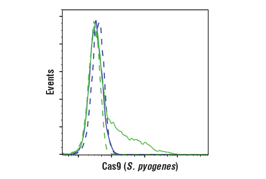 Image 1: Cas9 and Associated Proteins Antibody Sampler Kit