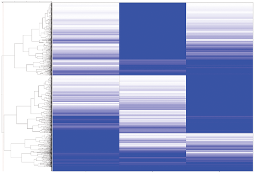 The image shows the hierarchical clustering heat map of mouse liver (left panel), brain (middle panel), and embryo tissue (right panel) from a PTMScan<sup>®</sup> LC-MS/MS experiment using PTMScan<sup>®</sup> Multi-Pathway Immunoaffinity Beads.