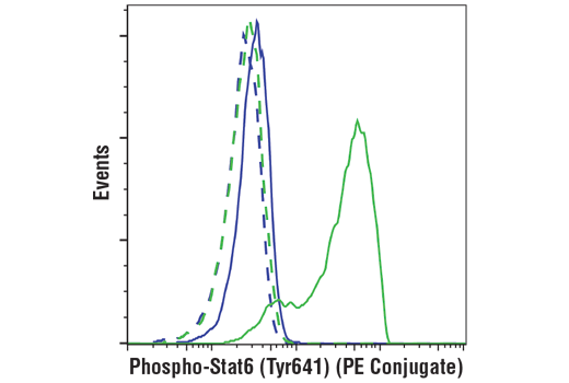 Monoclonal Antibody - Phospho-Stat6 (Tyr641) (D8S9Y) Rabbit mAb (PE Conjugate), UniProt ID P42226, Entrez ID 6778 #99902, Stat6