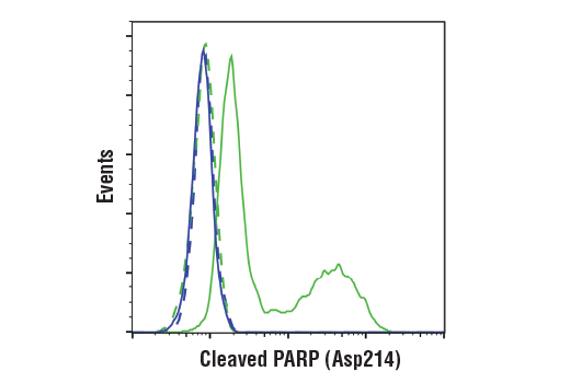 Flow Cytometry Image 1: Cleaved PARP (Asp214) (D6X6X) Rabbit mAb (Rodent Specific)
