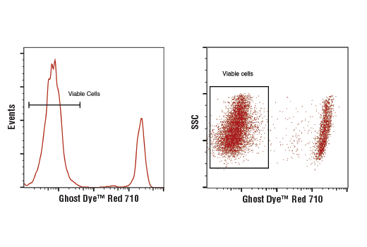 Cellular Dyes - Ghost Dye™ Red 710 Viability Dye - Flow Cytometry - 100 µl #90232