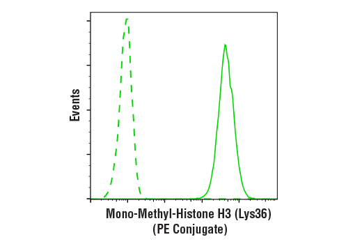Monoclonal Antibody Flow Cytometry H3 (Lys36) Methylate