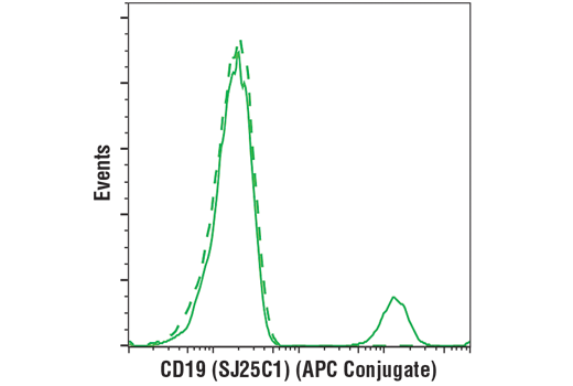 Flow cytometric analysis of live human peripheral blood mononuclear cells using CD19 (SJ25C1) Mouse mAb (APC Conjugate) (solid line) compared to concentration-matched Mouse (MOPC-21) mAb IgG1 Isotype Control (APC Conjugate) #49083 (dashed line).