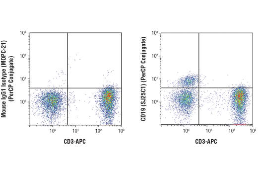 Flow cytometric analysis of live human peripheral blood mononuclear cells using CD19 (SJ25C1) Mouse mAb (PerCP Conjugate) (right) and co-stained with CD3-APC, compared to concentration-matched Mouse (MOPC-21) mAb IgG1 Isotype Control (PerCP Conjugate) #97713 (left).
