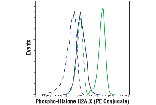 Monoclonal Antibody - Phospho-Histone H2A.X (Ser139) (D7T2V) Mouse mAb (PE Conjugate), UniProt ID P16104, Entrez ID 3014 #85410, Chromatin Regulation / Acetylation