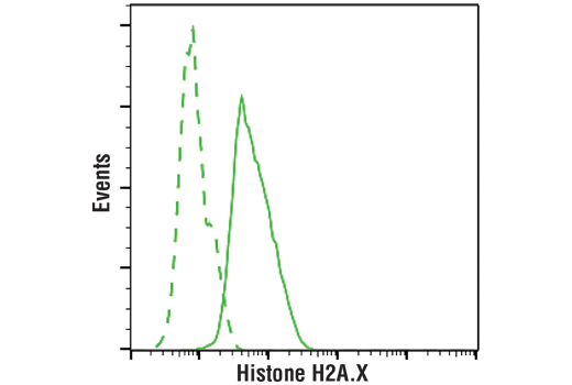 Flow cytometric analysis of MCF7 cells using Histone H2A.X (D17A3) XP<sup>®</sup> Rabbit mAb (PE Conjugate) (solid lines) or a concentration-matched Rabbit (DA1E) mAb IgG XP<sup>®</sup> Isotype Control (PE Conjugate) #5742 (dashed lines).