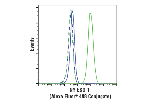 Flow Cytometry - NY-ESO-1 (D1Q2U) Rabbit mAb (Alexa Fluor® 488 Conjugate)