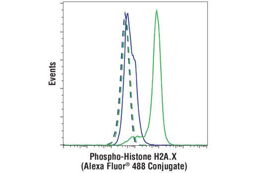 Flow cytometric analysis of HeLa cells, untreated (blue) or treated with UV (100 mJ, 2 hr recovery; green), using Phospho-Histone H2A.X (Ser139) (D7T2V) Mouse mAb (Alexa Fluor<sup>®</sup> 488 Conjugate) (solid lines) or concentration-matched Mouse (MOPC-21) mAb IgG1 Isotype Control (Alexa Fluor<sup>®</sup> 488 Conjugate) #4878 (dashed lines).