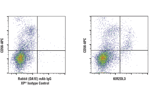 Flow cytometric analysis of live human peripheral blood mononuclear cells using KIR2DL3 (D8L3D) Rabbit mAb compared to concentration-matched Rabbit (DA1E) mAb IgG XP<sup>®</sup> Isotype Control #3900. Samples were co-stained with CD56 to distinguish NK cell population. Anti-rabbit IgG (H+L), F(ab')<sub>2</sub> Fragment (Alexa Fluor<sup>®</sup> 488 Conjugate) #4412. Total viable cells were used for analysis.