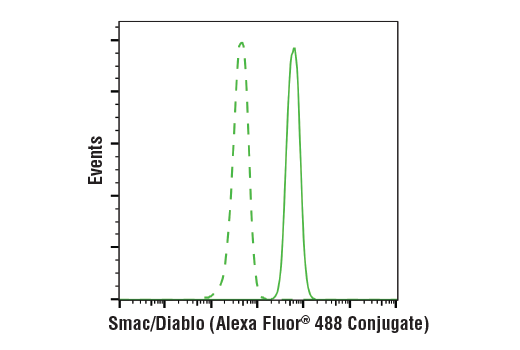 Flow cytometric analysis of Jurkat cells using Smac/Diablo (D5S3R) Rabbit mAb (Alexa Fluor<sup>®</sup> 488 Conjugate) (solid line) compared to concentration-matched Rabbit (DA1E) mAb IgG XP<sup>®</sup> Isotype Control (Alexa Fluor<sup>®</sup> 488 Conjugate) #2975 (dashed line).