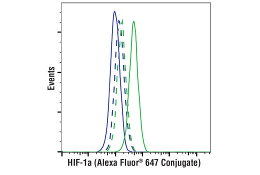Flow cytometric analysis of U-2 OS cells, untreated (blue) or treated with DMOG (1 mM, 6 hr; green), using HIF-1α (D1S7W) XP<sup>®</sup> Rabbit mAb (Alexa Fluor<sup>®</sup> 647 Conjugate) (solid lines) or concentration-matched Rabbit (DA1E) mAb IgG XP<sup>®</sup> Isotype Control (Alexa Fluor<sup>®</sup> 647 Conjugate) #2985 (dashed lines).