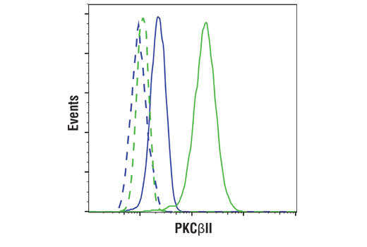 Flow cytometric analysis of HeLa cells (blue) and K-562 cells (green) using PKCβII (D9S2U) Rabbit mAb (solid lines) or a concentration matched Rabbit (DA1E) mAb IgG XP<sup>®</sup> Isotype Control #3900 (dashed lines). Anti-rabbit IgG (H+L), F(ab')<sub>2</sub> Fragment (Alexa Fluor<sup>®</sup> 488 Conjugate) #4412 was used as a secondary antibody.