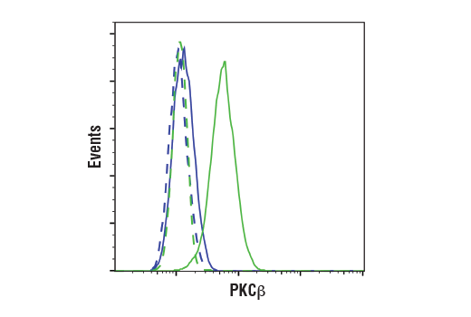 Flow cytometric analysis of HeLa cells (blue) and K-562 cells (green) using PKCβ (D3E7O) Rabbit mAb (solid lines) or a concentration matched Rabbit (DA1E) mAb IgG XP<sup>®</sup> Isotype Control #3900 (dashed lines). Anti-rabbit IgG (H+L), F(ab')<sub>2</sub> Fragment (Alexa Fluor<sup>®</sup> 488 Conjugate) #4412 was used as a secondary antibody.