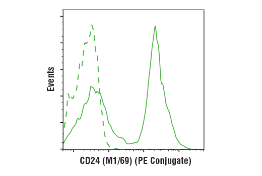 Monoclonal Antibody Flow Cytometry CD24 Mouse