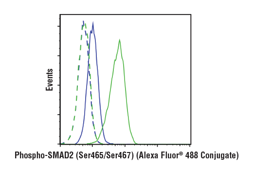 Flow cytometric analysis of serum-starved HT-1080 cells pretreated with SB43152 (10 ug/mL, 30 min) and treated with Human Transforming Growth Factor β3 (hTGF-β3) #8425 (100 ng/mL, 30 min; blue), or treated with hTGF-β3 #8425 (100 ng/mL, 30 min; green) alone using Phospho-Smad2 (Ser465/Ser467) (E8F3R) Rabbit mAb (Alexa Fluor<sup>®</sup> 488 Conjugate) (solid lines) or concentration-matched Rabbit (DA1E) mAb IgG XP<sup>®</sup> Isotype Control (Alexa Fluor<sup>®</sup> 488 Conjugate) #2975 (dashed lines).