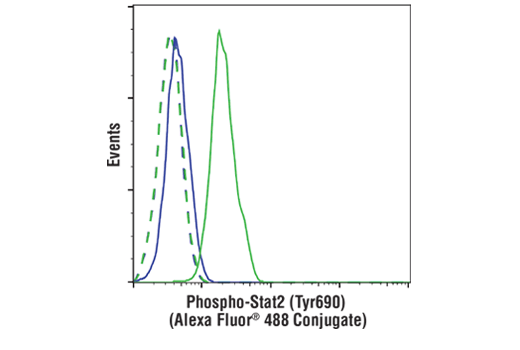 Flow cytometric analysis of U266 cells, untreated (blue) or treated with IFN-alpha (10 ng/ml, 15 min; green), using Phospho-Stat2 (Tyr690) (D3P2P) Rabbit mAb (Alexa Fluor<sup>®</sup> 488 Conjugate) (solid lines) or concentration-matched Rabbit (DA1E) mAb IgG XP<sup>®</sup> Isotype Control (Alexa Fluor<sup>®</sup> 488 Conjugate) #2975 (dashed lines).