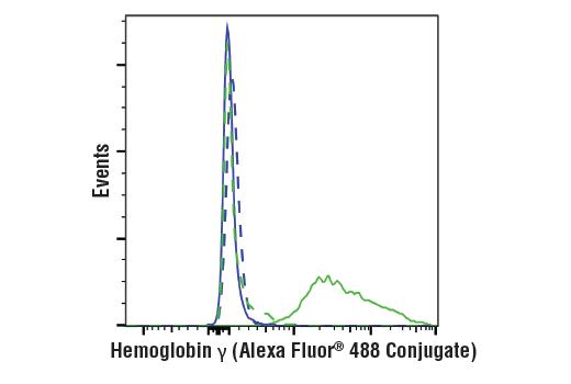 Monoclonal Antibody - Hemoglobin γ (D4K7X) Rabbit mAb (Alexa Fluor® 488 Conjugate), UniProt ID P69891, Entrez ID 3047 #51918 - Metabolism