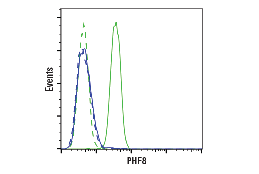 Flow cytometric analysis of DU 145 cells (blue) and NTERA-2 cells (green) using PHF8 (E9R4F) Rabbit mAb (solid lines) or a concentration-matched Rabbit (DA1E) mAb IgG XP<sup>®</sup> Isotype Control #3900 (dashed lines). Anti-rabbit IgG (H+L) F(ab')<sub>2</sub> Fragment (Alexa Fluor<sup>®</sup> 488 Conjugate) #4412 was used as a secondary antibody.