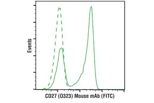 Monoclonal Antibody - CD27 (O323) Mouse mAb (FITC Conjugate), UniProt ID P26842, Entrez ID 939 #35379 - Primary Antibody Conjugates