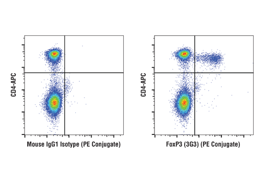 Flow Cytometry Image 1: FoxP3/Transcription Factor Fixation/Permeabilization Kit