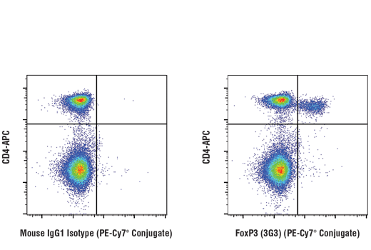 Mouse Positive Regulation of t Cell Anergy - count 18