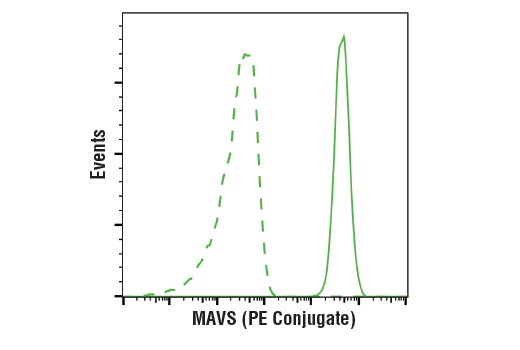 Flow cytometric analysis of THP-1 cells (green) using MAVS (D5A9E) Rabbit mAb (PE Conjugate) (solid line) compared to concentration-matched Rabbit (DA1E) mAb IgG XP<sup>®</sup> Isotype Control (PE Conjugate) #5742 (dashed line).