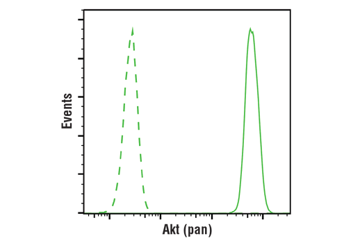 Flow cytometric analysis of Jurkat cells using Akt (pan) (E7J2C) Mouse mAb (solid line) compared to concentration-matched</p><p>Mouse (G3A1) mAb IgG1 Isotype Control #5415 (dashed line). Anti-mouse IgG (H+L), F(ab')<sub>2</sub> Fragment (Alexa Fluor<sup>®</sup> 488 Conjugate) #4408 was used as a secondary antibody.