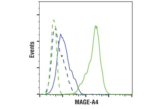 Flow Cytometry Image 1: MAGE-A4 (E7O1U) XP® Rabbit mAb