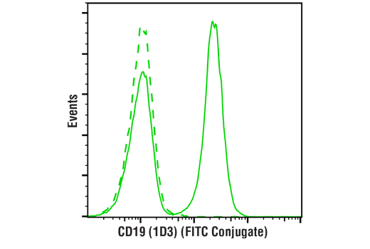 Monoclonal Antibody - CD19 (1D3) Rat mAb (FITC Conjugate) - Flow Cytometry, UniProt ID P25918, Entrez ID 12478 #53343