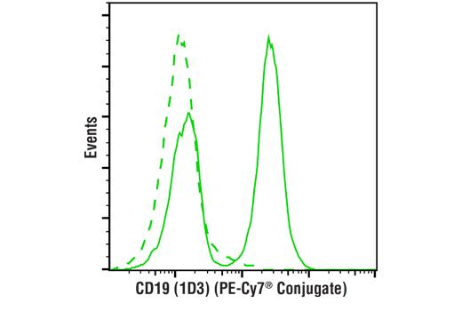 Monoclonal Antibody - CD19 (1D3) Rat mAb (PE-Cy7® Conjugate), UniProt ID P25918, Entrez ID 12478 #27221 - #27221