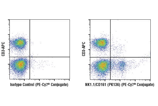 Flow cytometric analysis of live mouse splenocytes using NK1.1/CD161 (PK136) Mouse mAb (PE-Cy7<sup>® </sup>Conjugate) and co-stained with CD3 (17A2) Rat mAb (APC Conjugate) #24265 (right), compared to concentration-matched Mouse Isotype Control (PE-Cy7<sup>® </sup>Conjugate) (left).