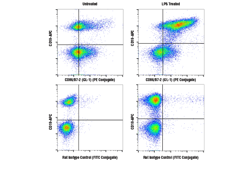 Monoclonal Antibody Flow Cytometry cd86 Mouse