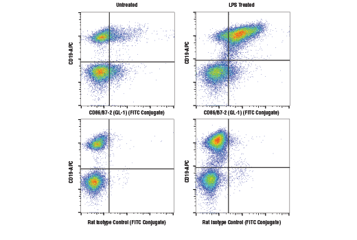 Flow Cytometry Image 1: CD86/B7-2 (GL-1) Rat mAb (FITC Conjugate)