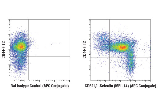 Monoclonal Antibody - CD62L/L-Selectin (MEL-14) Rat mAb (APC Conjugate), UniProt ID P18337, Entrez ID 20343 #46592 - Immunology and Inflammation