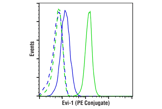 Flow cytometric analysis of DLD-1 cells (blue) and IGROV-1 cells (green) using Evi-1 (C50E12) Rabbit mAb (PE Conjugate) (solid lines) or concentration-matched Rabbit (DA1E) mAb IgG XP<sup>®</sup> Isotype Control (PE Conjugate) #5742 (dashed lines).