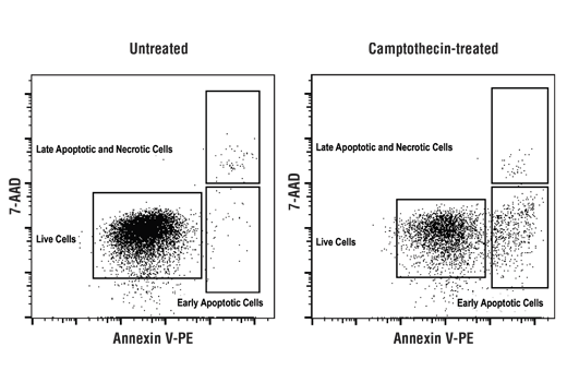 Flow Cytometry Image 1: Annexin V-PE Early Apoptosis Detection Kit