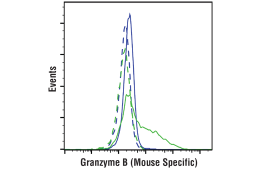 Flow cytometric analysis of C2C12 cells (blue) and CTLL-2 cells (green) using Granzyme B (E5V2L) Rabbit mAb (Mouse Specific) (solid lines) or a concentration-matched Rabbit (DA1E) mAb IgG XP<sup>®</sup> Isotype Control #3900 (dashed lines).</p><p>Anti-rabbit IgG (H+L), F(ab')<sub>2</sub> Fragment (Alexa Fluor<sup>®</sup> 488 Conjugate) #4412 was used as a secondary antibody.