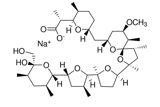 Chemical Modulators - Nigericin (sodium salt) - 5 mg #66419, Nigericin