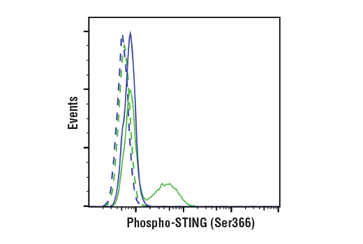 Image 2: Human-Reactive STING Pathway Antibody Sampler Kit