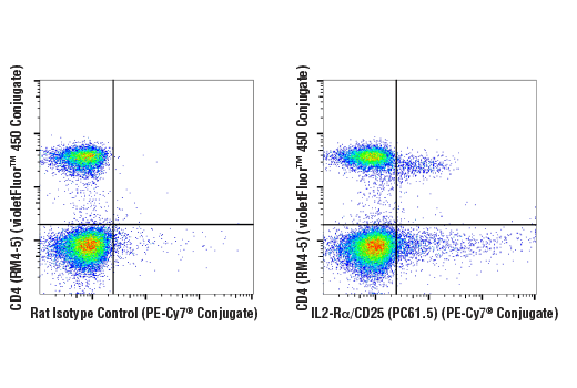 Flow cytometric analysis of live mouse splenocytes using IL2-Rα/CD25 (PC61.5) Rat mAb (PE-Cy7<sup>®</sup> Conjugate) and co-stained with CD4 (RM4-5) Rat mAb (violetFluor™ 450 Conjugate) #92599 (right), compared to concentration-matched Rat Isotype Control (PE-Cy7<sup>® </sup>Conjugate) (left).