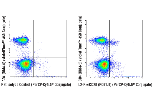 Flow cytometric analysis of live mouse splenocytes using IL2-Rα/CD25 (PC61.5) Rat mAb (PerCP-Cy5.5<sup>®</sup> Conjugate) and co-stained with CD4 (RM4-5) Rat mAb (violetFluor™ 450 Conjugate) #92599 (right), compared to concentration-matched Rat Isotype Control (PerCP-Cy5.5<sup>® </sup>Conjugate) (left).