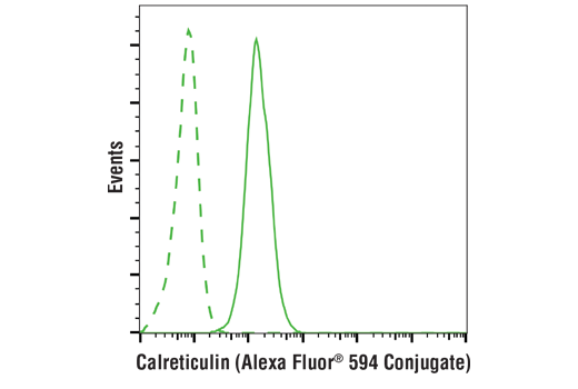 Flow cytometric analysis of Jurkat cells using Calreticulin (D3E6) XP<sup>®</sup> Rabbit mAb (Alexa Fluor<sup>®</sup> 594 Conjugate)</p><p>(solid line) compared to concentration-matched Rabbit (DA1E) mAb IgG XP<sup>®</sup> Isotype Control (Alexa Fluor<sup>®</sup> 594 Conjugate) (dashed line).